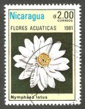 Aquatic Flowers, Nymphaea lotus. Nicaragua - stamp 1981, Edition Fauna, Flora, Plants, Series Aquatic Flowers, Nymphaea lotus Royalty Free Stock Photo