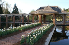 Aquatic Garden. Located at The Huntsville Botanical Garden is a growing non-profit garden located in Alabama. The Garden will achieve world-class recognition by Stock Photo