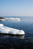 Aquatic nature, the ice floe in the ocean. Royalty Free Stock Photos