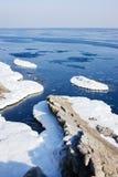 Aquatic nature, North sea. Royalty Free Stock Photo
