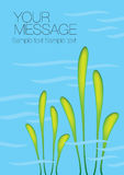 Aquatic Plant Vector Background Royalty Free Stock Photography