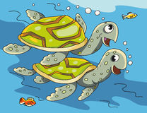 Aquatic turtles. Vector illustration. Two turtles swim under water. Next to them are floating fish Royalty Free Stock Photo