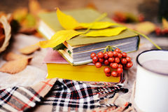 Aqueça o lenço feito malha e um livro em uma bandeja de madeira Queda calma franco Fotografia de Stock Royalty Free