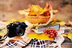 Aqueça o lenço feito malha e um livro em uma bandeja de madeira Queda calma franco Foto de Stock