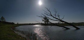 Aqueça o por do sol calmo sobre pântanos em Ucrânia, Kiev Foto de Stock