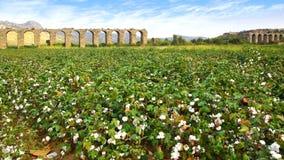Aqueduc chez Aspendos à Antalya, Turquie Photos stock