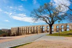 Aqueduc d'Amoreira Images libres de droits