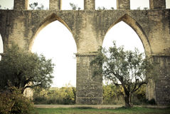 Aqueduct and olives. Roman aqueduct Pegões in Portugal Royalty Free Stock Image