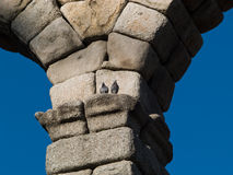 Aqueduct of Segovia. A couple of pigeons on the Famous Unesco world heritage site from the city of Segovia, Spain Royalty Free Stock Photo