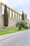 Aqueduct of Serpa Royalty Free Stock Photos