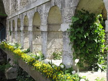 Aqueduto em França Imagens de Stock