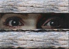 Aqueles olhos Fotografia de Stock Royalty Free