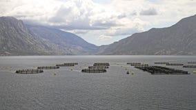 Aquicultuur Aqua Farming Nets royalty-vrije stock fotografie