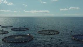 Aquicultuur kweken van vis die op volle zee bewerken stock videobeelden