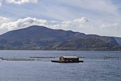 Aquicultuur in Noorwegen royalty-vrije stock foto's