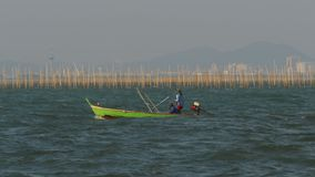 Aquicultuur van het landbouwbedrijf van de schaaldierenoester in het overzees in Thailand, Pattaya, Azië stock footage