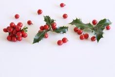 Aquifolium d'Ilex de houx de Noël d'isolement sur le fond blanc de table Feuilles d'arbre avec les baies rouges L'espace vide pou photo stock