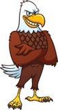 Aquila americana calva del fumetto Fotografia Stock