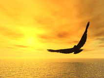 Aquila in ascesa Fotografia Stock Libera da Diritti