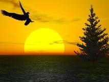 Aquila dei pini Fotografia Stock Libera da Diritti