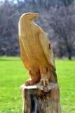 Aquila di legno Immagine Stock