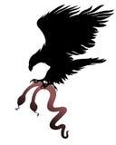 Aquila e un serpente Fotografia Stock Libera da Diritti