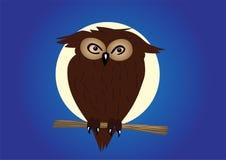 Aquila-gufo sul ramoscello nella notte Immagine Stock Libera da Diritti