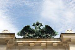 Aquila imperiale Fotografie Stock