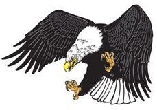 Aquila intestata bianca calva nella mosca illustrazione di stock