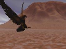 Aquila sola Fotografia Stock