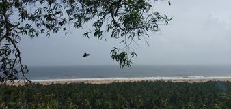 Aquila trivandrum della sabbia delle onde del mare della scogliera immagine stock libera da diritti