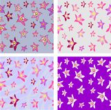 Aquilegia Flower Seamless Texture Stock Images