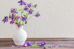 Aquilegia flowers in white vase on wooden table. Purple aquilegia flowers in white vase on wooden table royalty free stock images