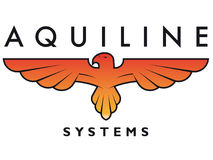Aquiline. Logo element that can be used for company branding Stock Photography