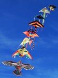 Aquilone in cielo blu Fotografia Stock