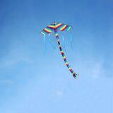 Aquilone variopinto volante fotografia stock