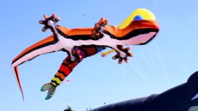 Aquiloni che volano nel cielo video d archivio