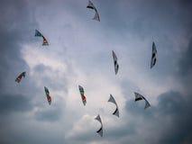 Aquiloni contro un cielo scuro Fotografia Stock Libera da Diritti