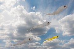 Aquiloni gialli e bianchi del fantasma nel cielo nuvoloso blu Fotografia Stock