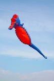 Aquiloni nel cielo - libertà Fotografia Stock Libera da Diritti