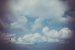 Aquiloni nel cielo nei retro colori Fotografia Stock