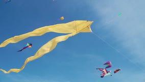 Aquiloni nella forma del volo del crampo-pesce in cielo fra dozzine di aquiloni differenti archivi video