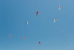 Aquiloni sui precedenti del cielo blu Immagini Stock