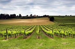 Aquitaine Frankreich Stockfotografie
