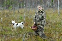 Arándano de la selección de la mujer joven en un pantano imagen de archivo