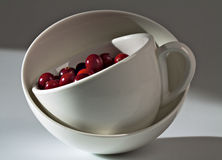 Arándanos en una taza blanca. Foto de archivo libre de regalías