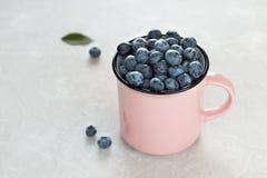 Arándanos frescos en taza o taza rosada en fondo gris claro Imagen de archivo