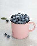 Arándanos frescos en taza rosada en fondo de piedra gris claro Imagen de archivo libre de regalías