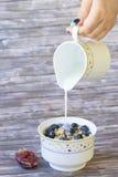 Arándanos y avenas frescos de los higos con leche Imágenes de archivo libres de regalías
