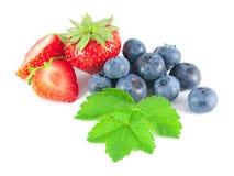 Arándanos y fresas con las hojas Imagen de archivo libre de regalías